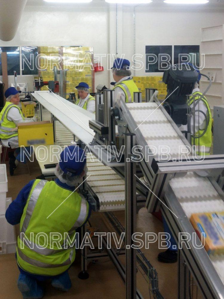 Компания конвейер спб рязань район элеватора