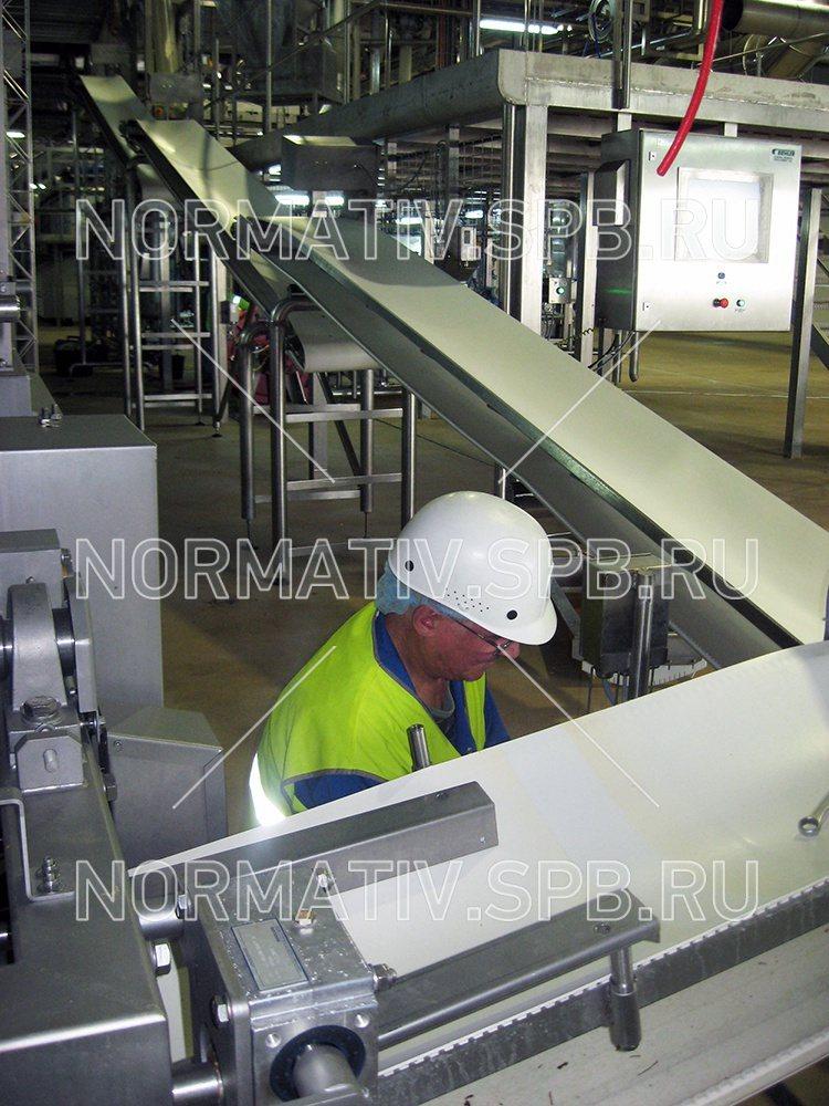 Монтаж конвейерного оборудования глазной конвейер федорова ромашка