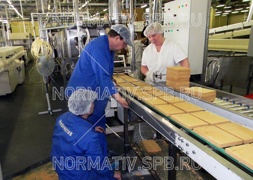 Конвейерное оборудование в работе manter элеватор